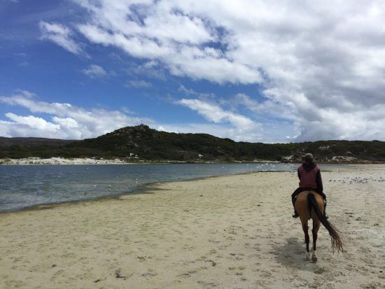Horse riding on Noodhoek Beach with Imoff Equestrian Centre