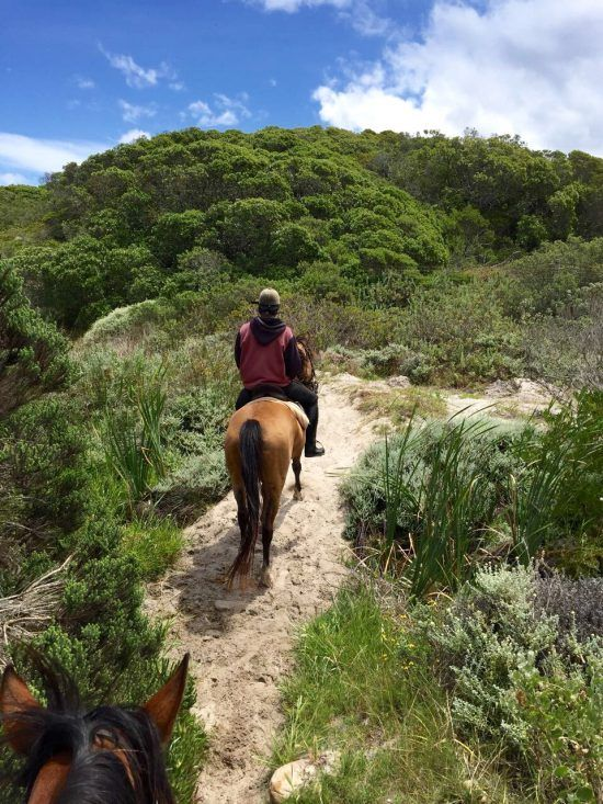 Horse riding in the dunes of Noodhoek Beach