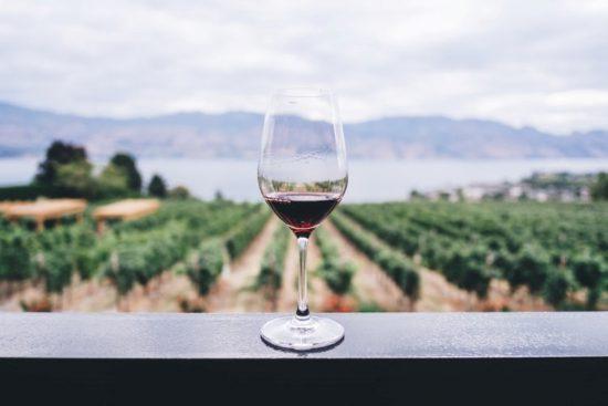 Weinglas vor Weinberg-Kulisse
