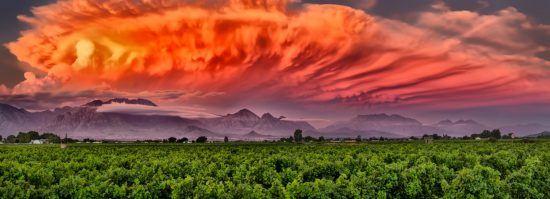 Sonnenuntergang Weinland
