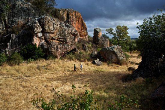 Buschwanderung in Simbabwe