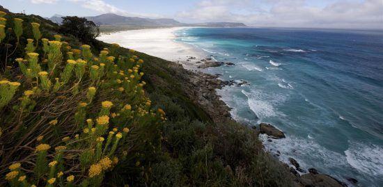 Noodhoek Beach in Cape Town