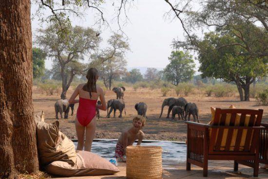 Zwei Kinder planschen in einem Pool, während im Hintergrund Elefanten auf dem Gelände grasen