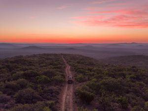 Voiture tout-terrain en safari à travers la savane, Afrique du Sud