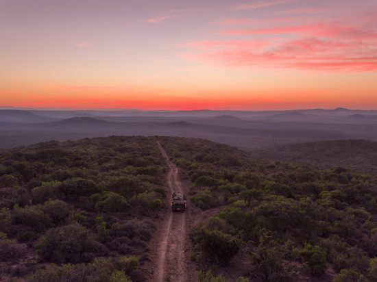 Sunset game drives in Kwandwe Game Reserve in Rhino Africa's Complete Guide