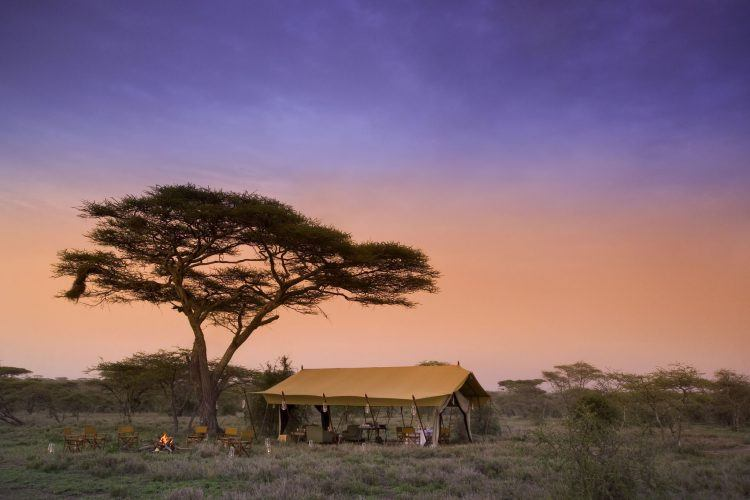 Guest Area tent at &Beyond Serengeti Under Canvas, Tanzania