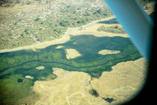 Aerial view of the Okavango Delta in Botswana