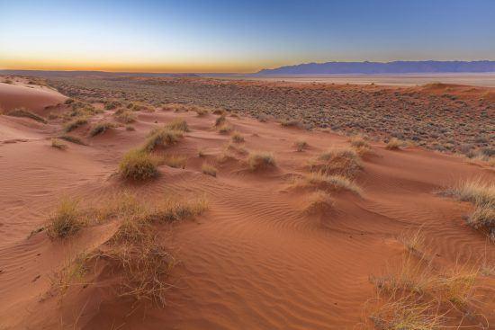 Der rote Sand der Kalahari Wüste in Botswana