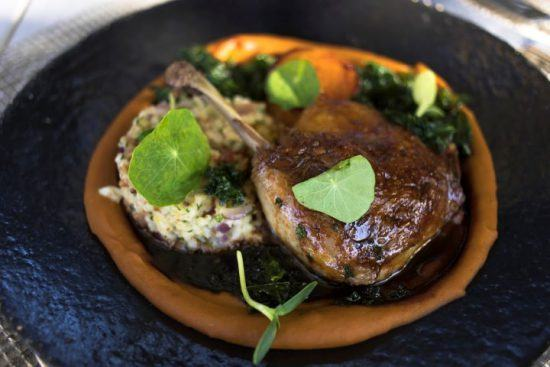 Ein dekorativ angerichteter Teller mit feinem Essen - Fine Dining in den Cape Winelands