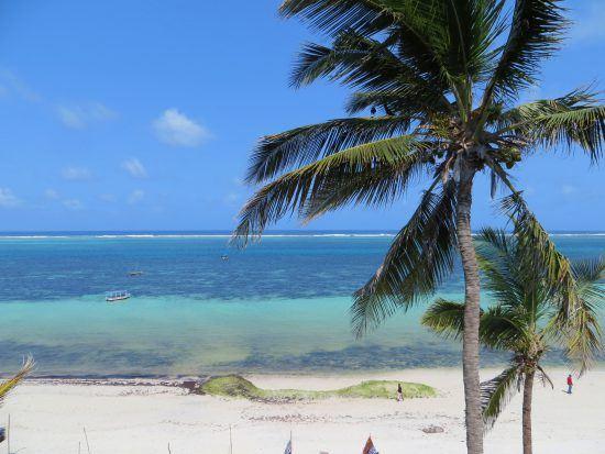 Palm trees on Nyali Beach in Kenya