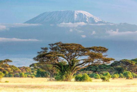 Der schneebedeckte Kilimandscharo in Ostafrika