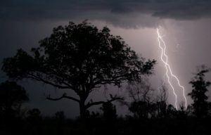 Orage sur le Parc Kruger