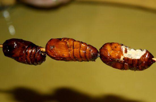 Gegrillte Insekten am Spieß in Sambia