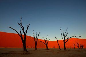 Sunset in the Namibia desert