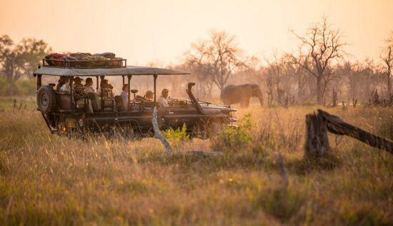 Día de safari a través del Delta de Okavango