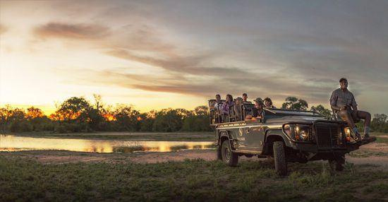 Safári em veículoi 4x4 em Silvan Safari, Reserva Sabi Sand, África do Sul. Foto: Silvan Safari