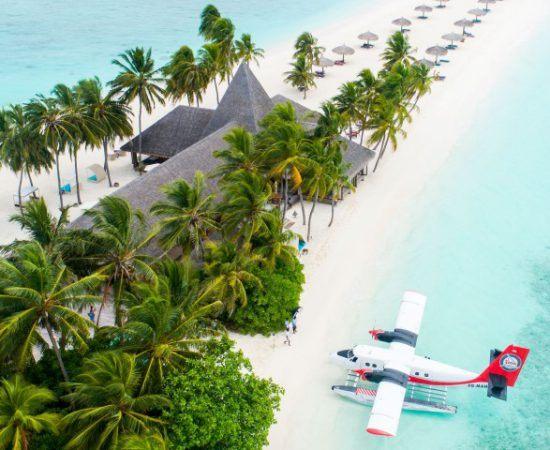 Urlaub auf den Malediven: Ein Wasserflugzeug landet an einem weißen Strand mit Palmen und einem Gebäude
