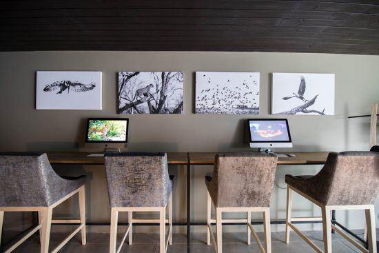 Uma das exclusividades de Silvan Safari é o media room, onde os guias podem treinar suas habilidades em Photoshop e hóspedes podem descarregar e trabalhar em suas fotos. Foto: Silvan Safari