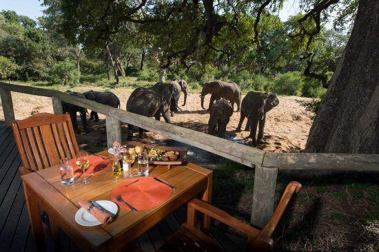 Dinner auf der Aussichtsterrasse