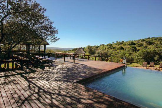 Ein teilweise schattiges Sonnendeck mit Pool überblickt das grüne Tierreservat