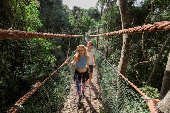 Zwei Personen wandern über eine Hängebrücke