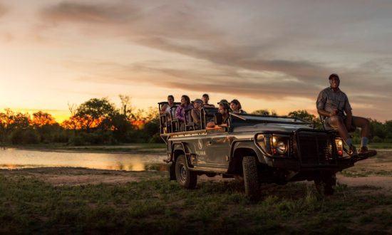 Voiture safari au Parc national Kruger l'une des top destinations en Afrique