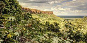Paysage montagneux et verdoyant au Limpopo, Afrique du Sud