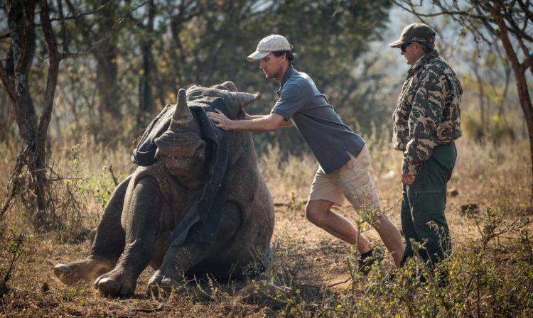 Bénévole de l'association Wildlife ACT dans son action de lutte anti braconnage des rhinocéros