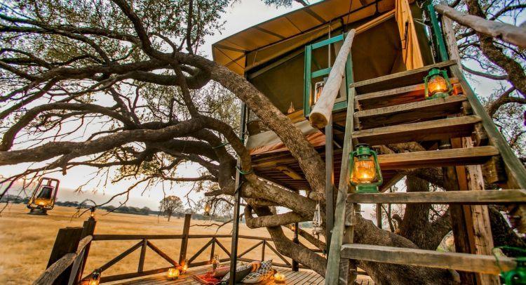 The Hide et sa cabane perchée dans les arbres dans le Parc National de Hwange, Zimbabwe