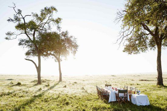 Ein gedeckter Tisch und Sesseln stehen in der Savanne