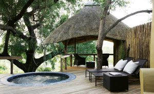 Terrasse privée avec piscine à Londolozi Varty Camp