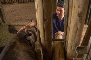 Pequeño rinoceronte rescatado por Wildlife ACT