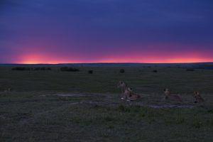 Masái Mara, Kenia, tiene algunos de los mejores atardeceres de África