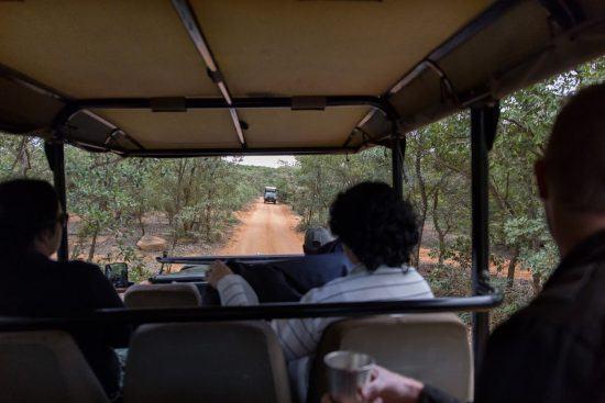Reserva Welgevonden, Waterberg, Limpopo