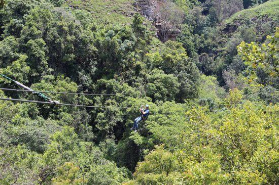 Ein Mann der auf einer Zipline mitten im Urwald lacht