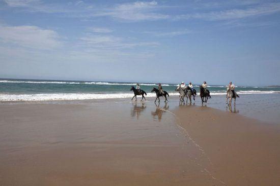 Fünf Reiter auf Pferden gehen über einen Strand in Durban, dahinter das Meer