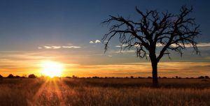 El atardecer en el desierdo de Kalahari, Namibia
