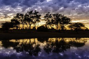 Atardecer en la reserva natural Moremi, Botsuana