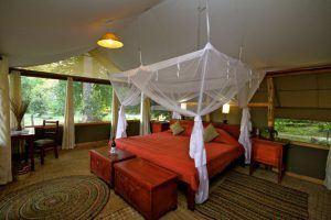 Zimmer des Ishasha Wilderness Camps
