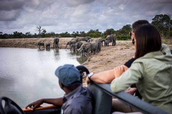 Ein Paar auf einer Safari