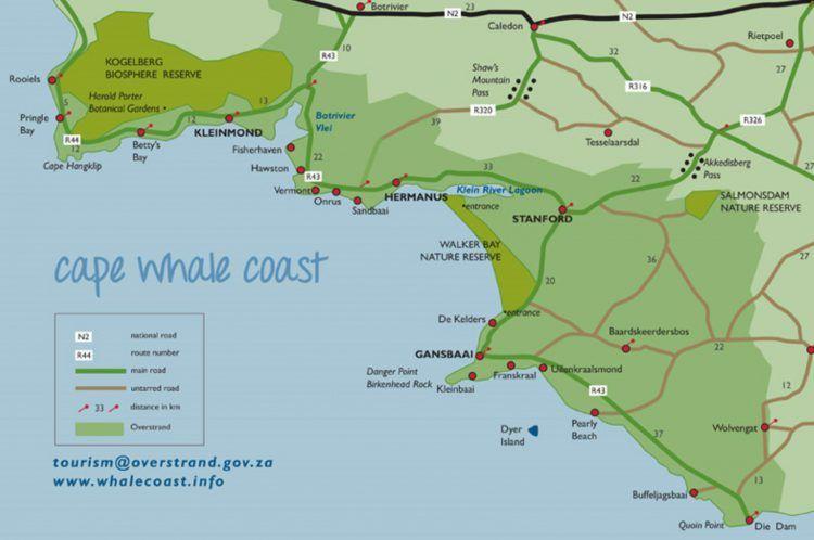 Carte de la route des baleines