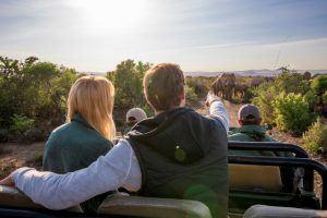 Safari an der Garden Route: Ein Paar auf einer Pirschfahrt im Kwandwe Private Game Reserve