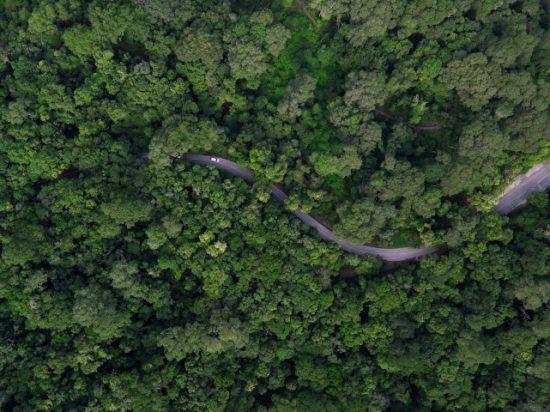 Photo d'un drône de la Garden Route sillonant les forêts vertes et les côtes d'Afrique du Sud