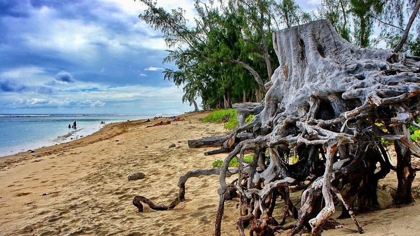 Der wunderschöne Sandstrand Hermitage Beach auf La Réunion