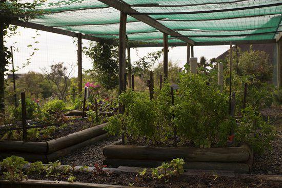 Horta de Mhondoro Safari Lodge & Villa