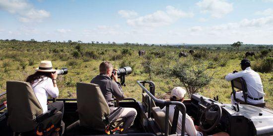El safari fotográfico es una de las opciones favoritas de los visitantes.