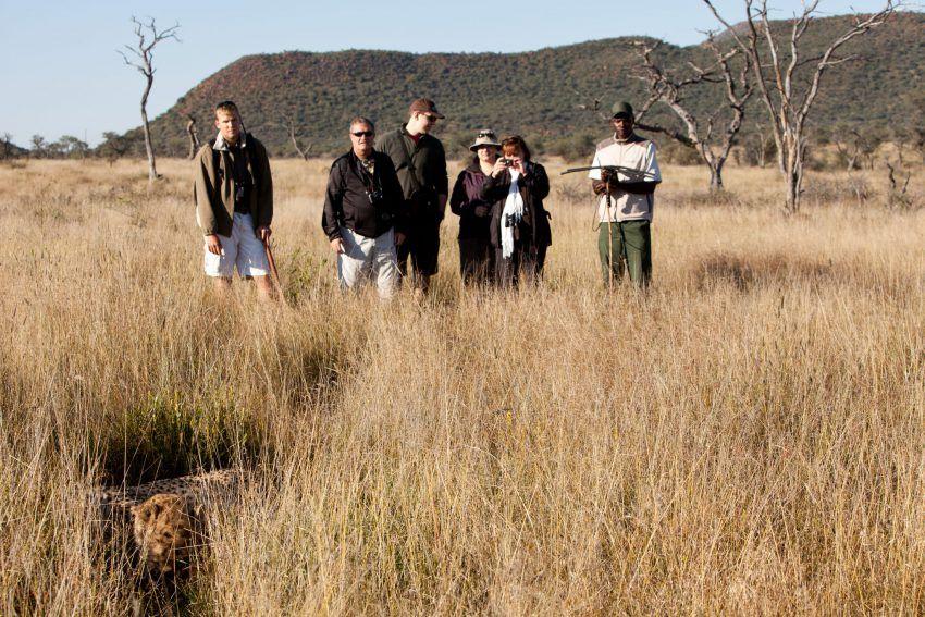 Auf Spuren von Geparden im Okonjima Luxury Bush Camp
