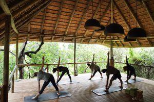 El yoga como forma de conexión con la naturaleza y uno mismo