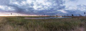 Hermoso paisaje en la sabana, perfecto para descansar durante tu safari en África