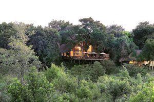 Exteriores de Londolozi Varty Camp